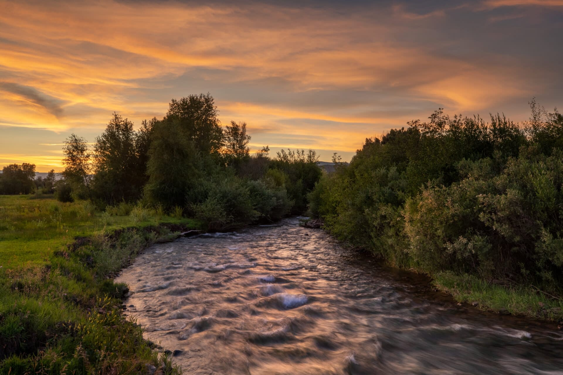 Photo by Eagle Valley Wild. Eagle County rivers and streams